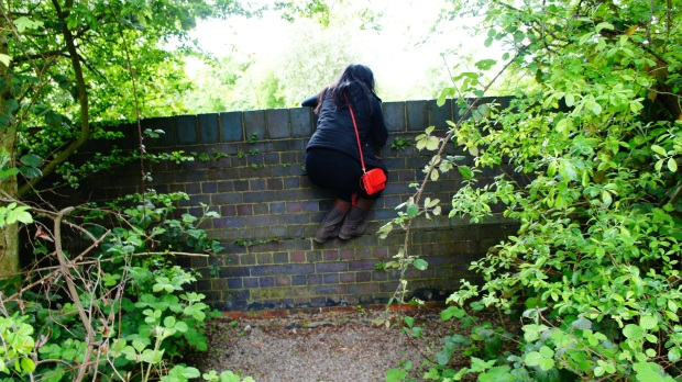 Her attempt to climb over a wall...